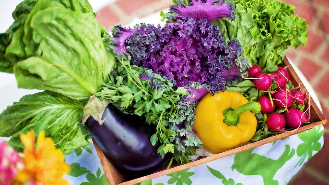 Mely vitaminokat nem tudja a szervezet előállítani?